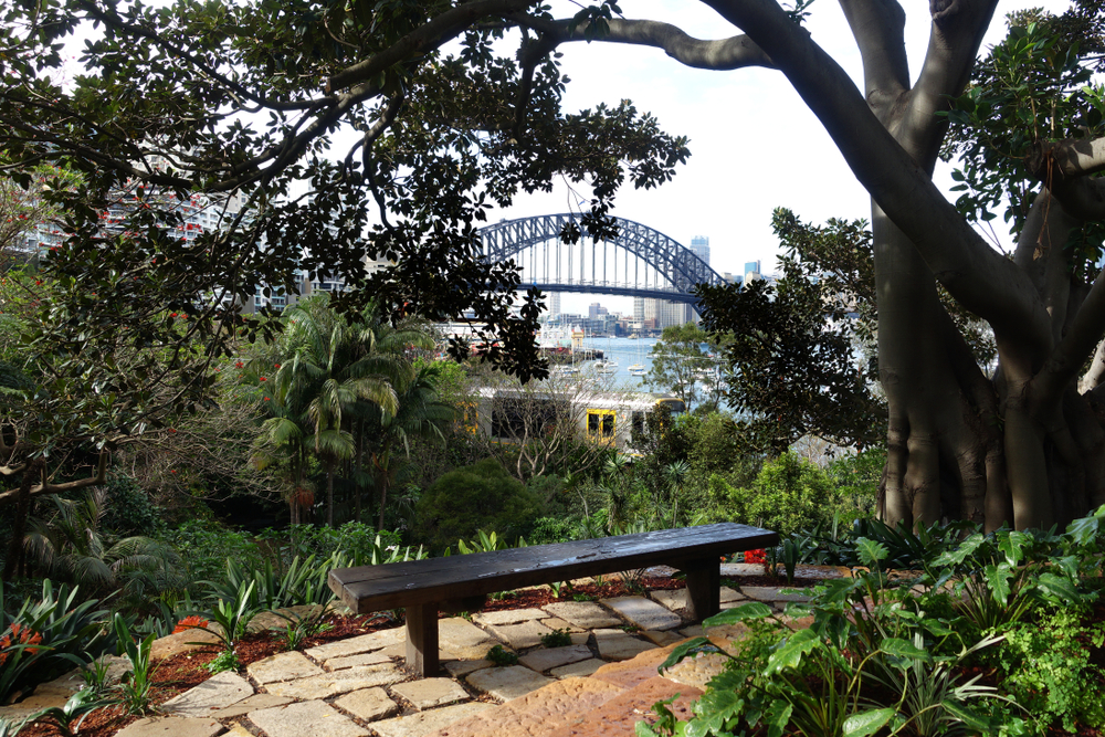 Wendy's secret garden- Harbour Bridge Sydney